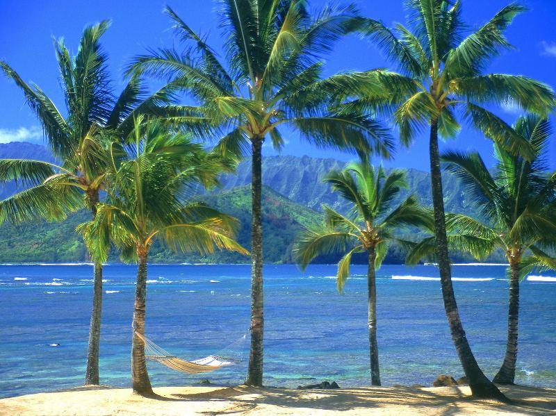 hedza.com deniz ve sahil resimleri
