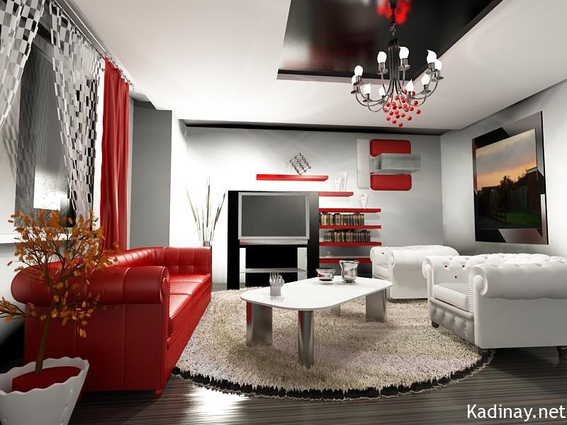 2011-ev-dekorasyon-modeli-1