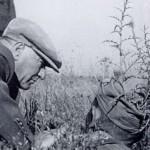 Atatürk Resimleri 2