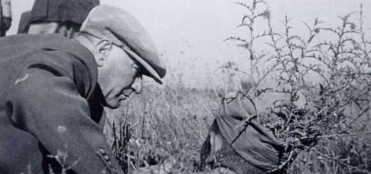atatürk resimleri (45)